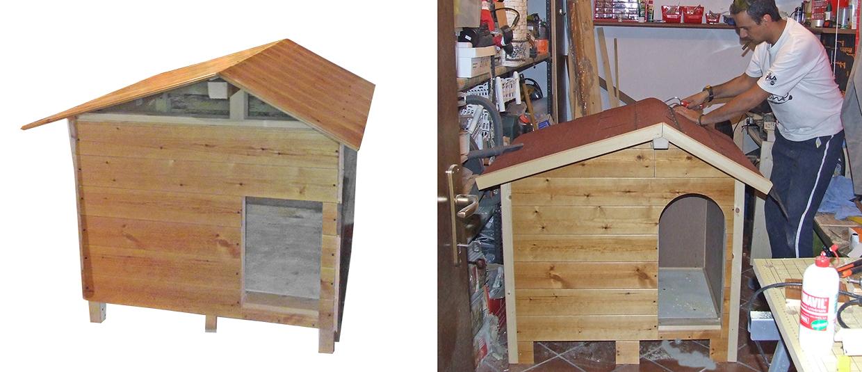 struttura tetto cuccia