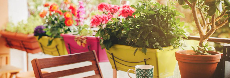 arredare balcone piante fiori