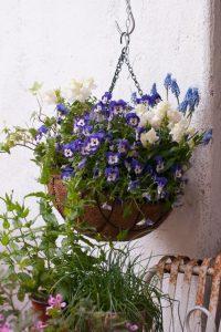 cesti fiori arredo terrazzo